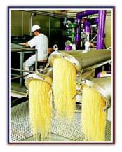 خط تولید ژلاتین