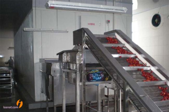 خط تولید سبزیجات و میوه جات منجمد به روش IQF