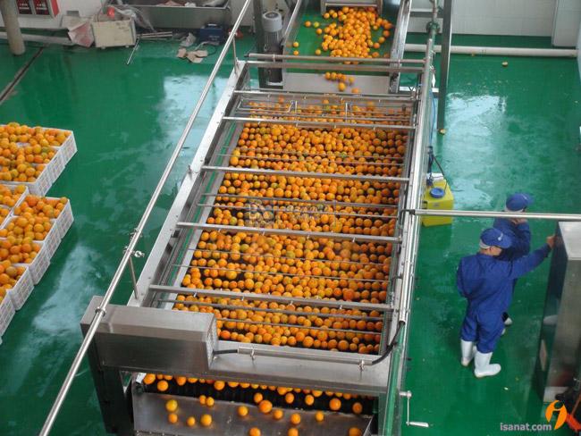 خط تولید کنسانتره مرکبات و پرتقال