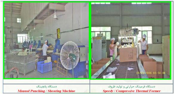 فرآیند تولید ظروف یکبار مصرف گیاهی - تجزیه پذیر