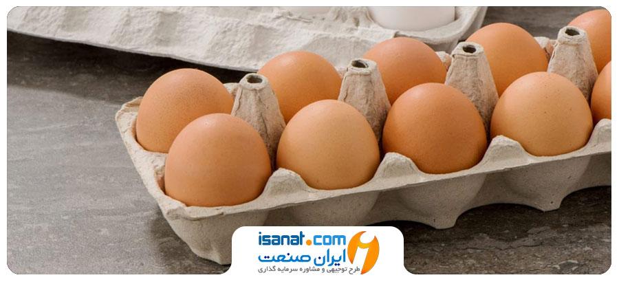 طرح توجیهی تولید شانه تخم مرغ