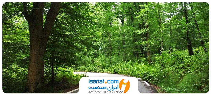 طرح توجیهی احداث پارک جنگلی